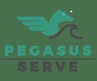 Pegasus Serve-1