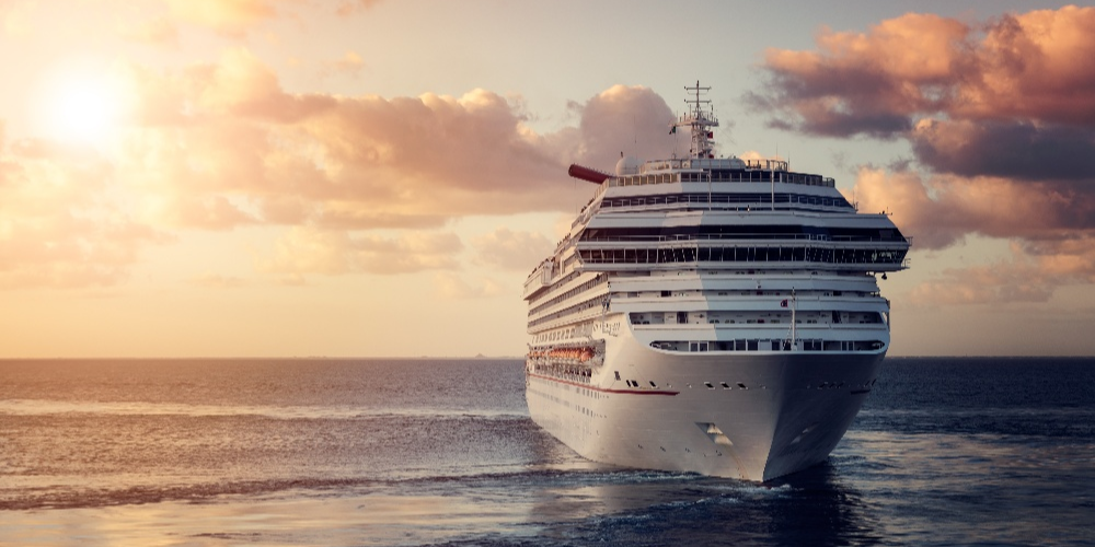 Cruise Ship Security
