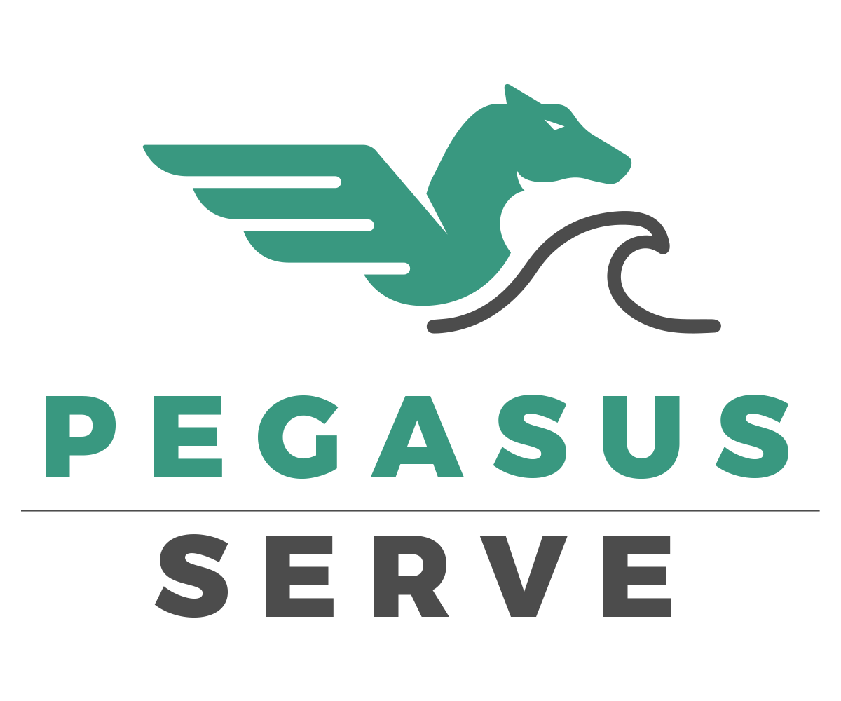 Pegasus Serve-1