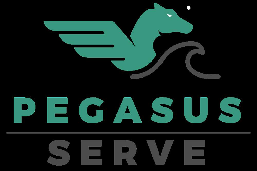 Pegasus Serve-1000x667